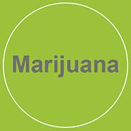 Marijuana Button web